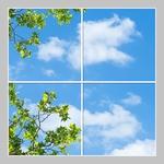 4 Panelen Formaat 120cm x 120cm diverse designs