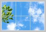 6 Panelen Formaat 180cm x 120cm diverse designs