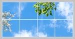 8 Panelen Formaat 240cm x 120cm diverse designs
